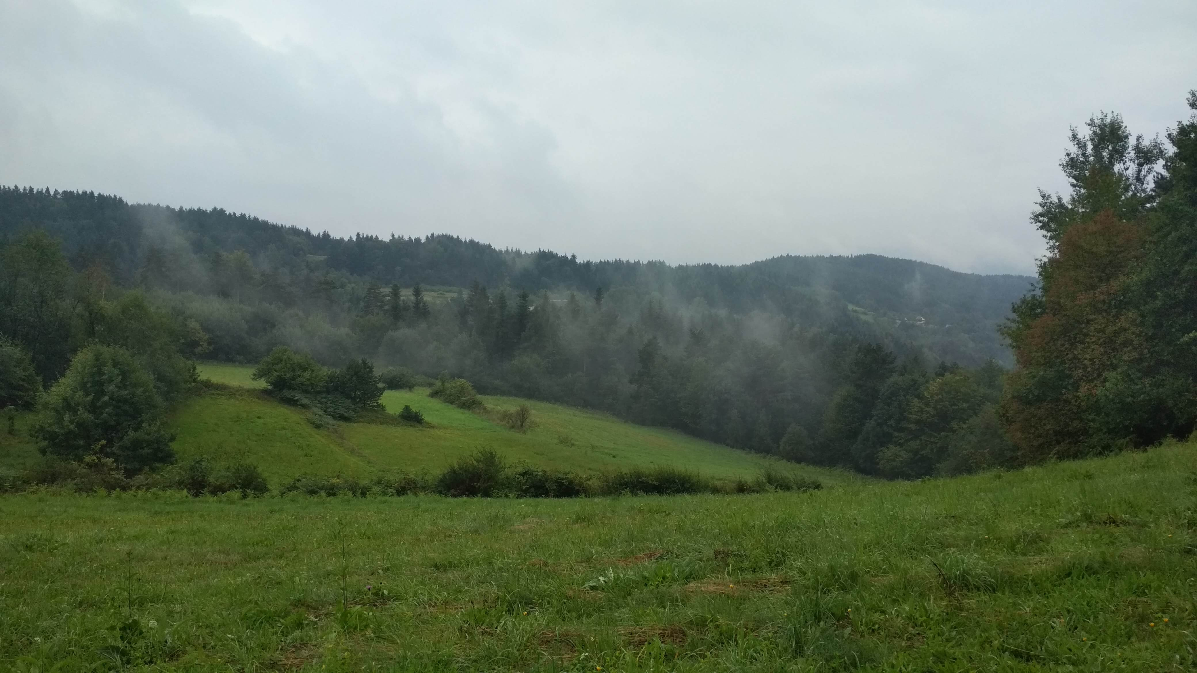Poranna mgła w drodze na Kudłacze