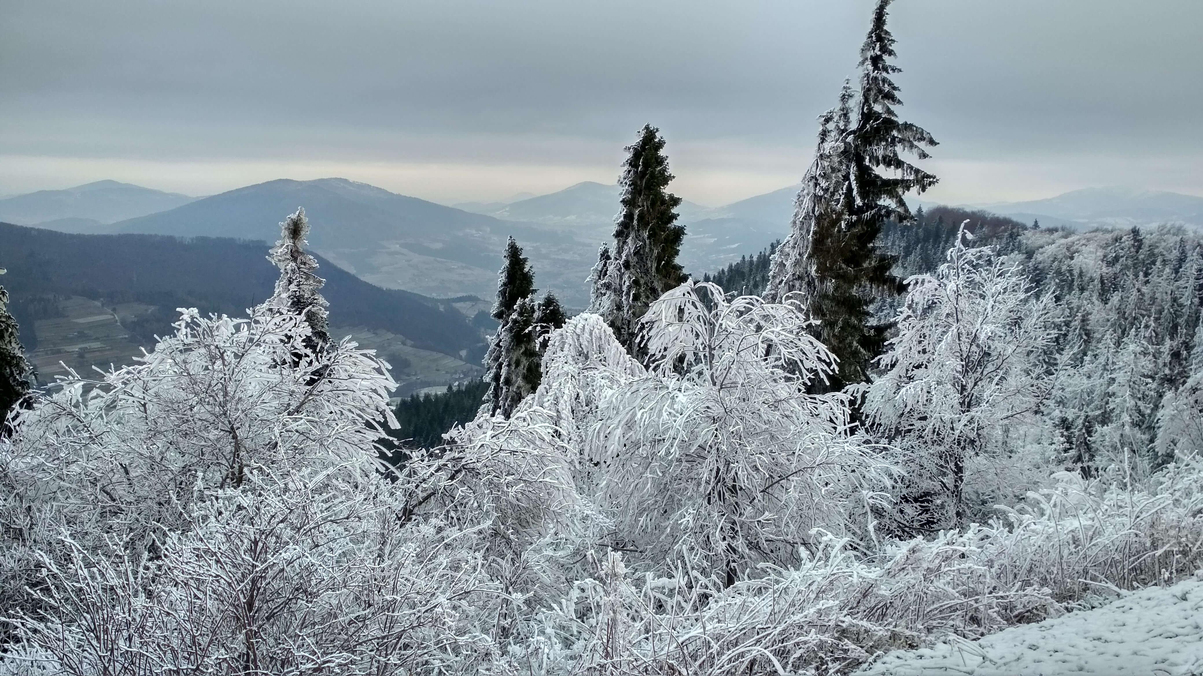 Zima, mróz, śnieg i pięknie