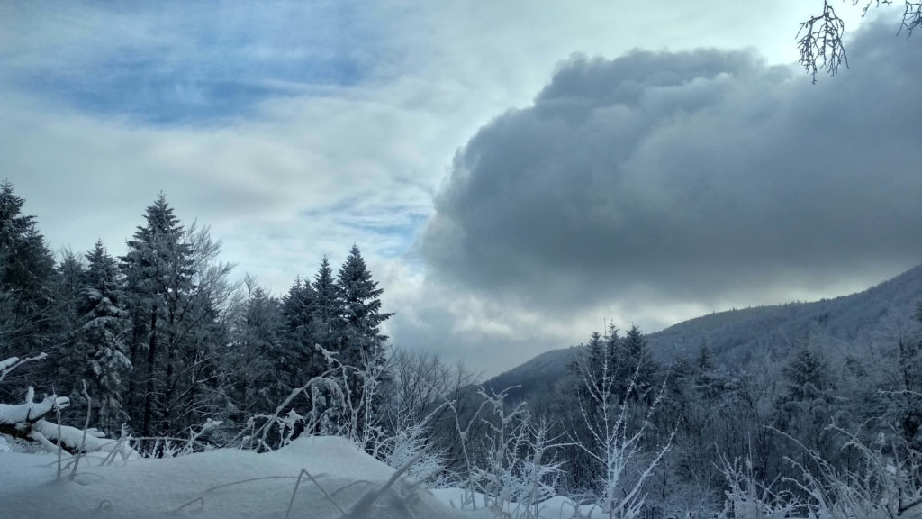 Zimowe spektakle