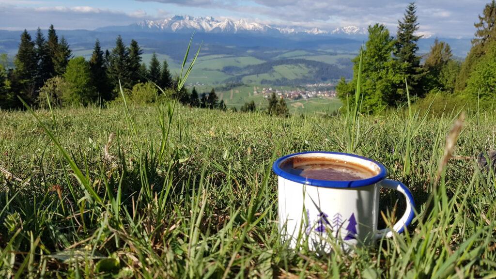 Kawka z widokiem na Tatry