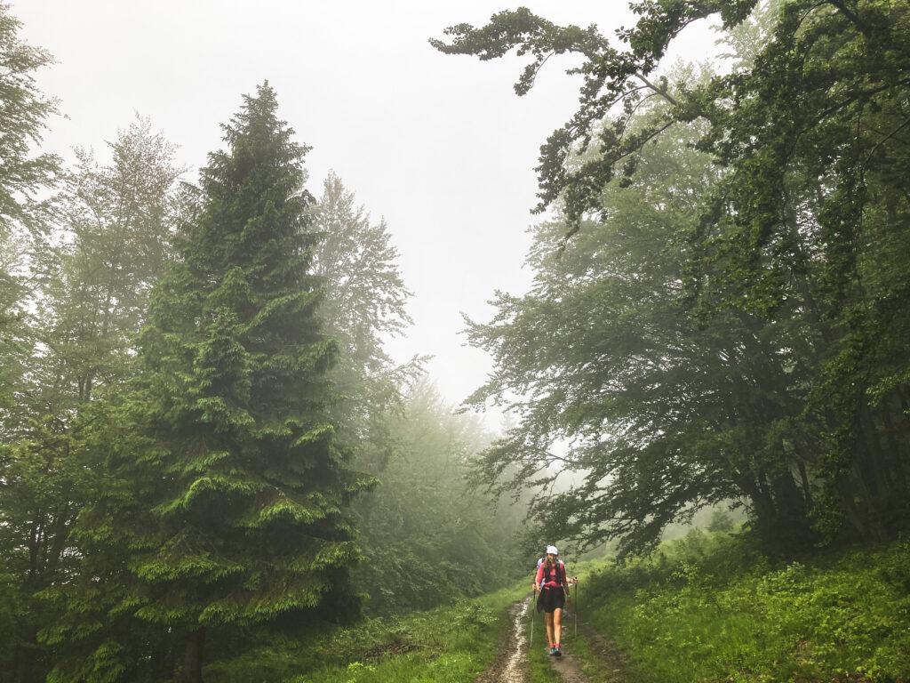 100km W tym mglistym raju
