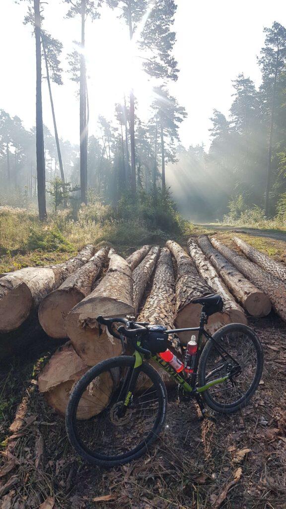 Leśny relaks
