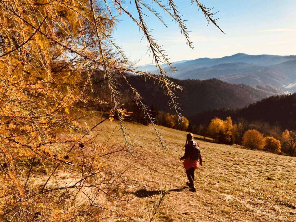 Jesiennie, Magurki